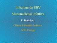 Infezione da EBV Mononucleosi infettiva - Il diario di Fable