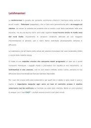 Leishmaniosi - Protezione Civile Coazze