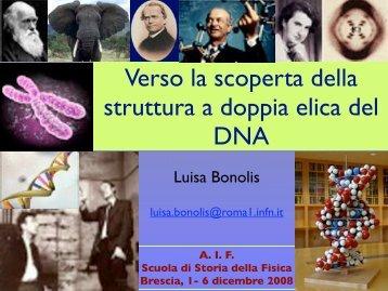 Verso la scoperta della doppia elica del DNA - Luisa Bonolis ...