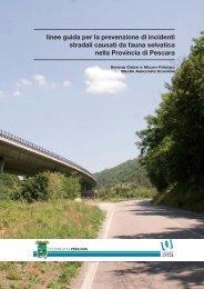 linee guida per la prevenzione di incidenti stradali ... - Ecoview.it