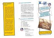 Corso: ''La Speleologia in ambiente vulcanico' - Club Alpino Italiano