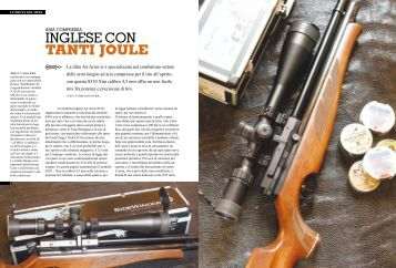 Leggi l'articolo Action Arms - Domino