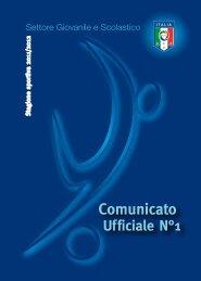 Comunicato n° 1 SGS - f.i.g.c. maglie