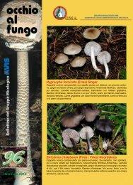 Occhio al fungo_n 96_gennaio 2012(.Pdf 711 KB) - Avis