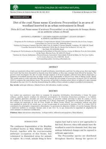 Diet of the coati Nasua nasua (Carnivora: Procyonidae) in an area of ...