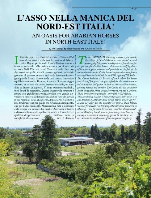 L'ASSO NELLA MANICA DEL NORD-EST ITALIA! - tutto arabi