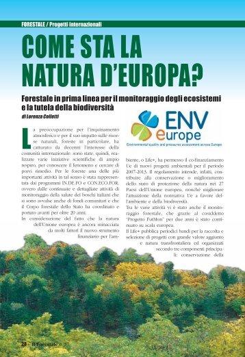 FORESTALE / Progetti internazionali - ENVeurope