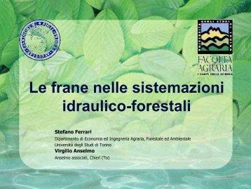 Sistemazioni idraulico-forestali a basso impatto ambientale
