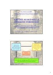 USO DEL SUOLO NELLA GESTIONE FORESTALE - Centro CISA