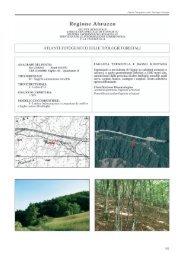 Atlante Fotografico delle Tipologie Forestali - Regione Abruzzo