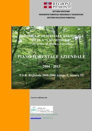 Relazione generale - Regione Piemonte