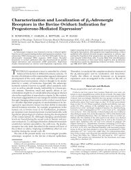 Adrenergic Receptors in the Bovine Oviduct: Indication for ...