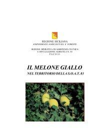 IL MELONE GIALLO - Portale dell'innovazione - Regione Siciliana