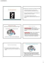 Lezione 4 (pdf, it, 3045 KB, 12/4/12)
