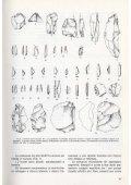 LanzingerM1985_PA21_Ricerche nei siti mesolitici della cresta di ... - Page 6