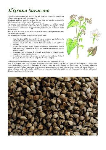 Grani e Cereali - Sala Cereali S.r.l.
