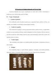 O Processo de Industrialização do Fio da Seda (pdf - 236Kb)