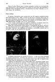 el hornero - Biblioteca Digital FCEN UBA - Universidad de Buenos ... - Page 6