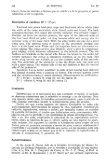 el hornero - Biblioteca Digital FCEN UBA - Universidad de Buenos ... - Page 7