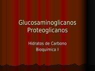 Glucosaminglicanos