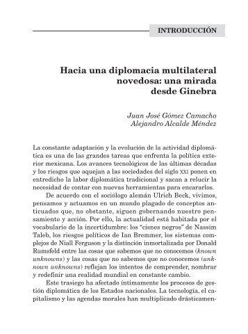 Hacia una diplomacia multilateral novedosa: una mirada desde ...