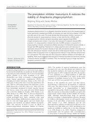 The prenylation inhibitor manumycin A reduces the viability of ...
