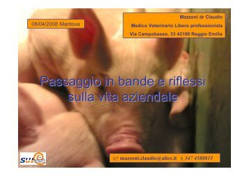 scarica la relazione - Gruppo Veterinario Suinicolo Mantovano
