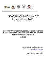 programa de becas ciudad de méxico-china 2011 - Facultad de ...