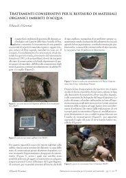Trattamenti conservativi per il restauro di materiali organici imbibiti d ...