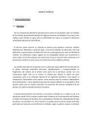 MARCO TEÓRICO 1 (Aceites esenciales) - Web del Profesor