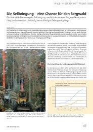41 Die Seilbringung – eine Chance für den Bergwald - Bayern