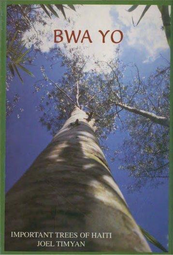 Important Trees of Haiti