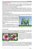 AKVIS MultiBrush - Page 4