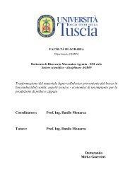 Lav. 5 - Unitus DSpace - Università degli Studi della Tuscia