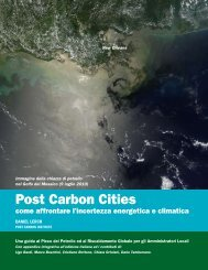 Post Carbon Cities - The Next Project