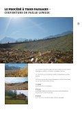 Prospectus Votre spécialiste de la végétalisation ... - Weiss+Appetito - Page 5