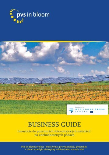 BUSINESS GUIDE - PVS in bloom