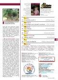 Gennaio 2009 - il bollettino salesiano - Don Bosco nel Mondo - Page 3