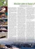 Informe especial Prestige, Mareas Negras ¡Nunca Más! - Ceida - Page 6