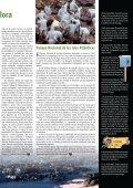 Informe especial Prestige, Mareas Negras ¡Nunca Más! - Ceida - Page 7