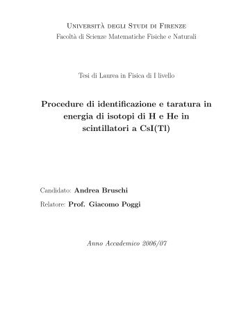 Andrea Bruschi - INFN Bologna