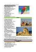 Ciencias. Mari Carmen Martínez Rodríguez I - Atención a la ... - Page 6