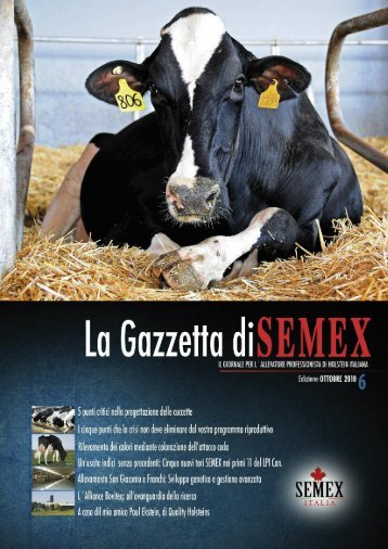 Maquetación 1 - Semex Alliance