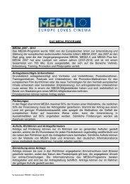So funktioniert MEDIA (PDF) - MEDIA Desk Deutschland