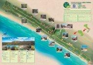 Cartina Foresta di Cum#4C4.fh11 - Regione Campania