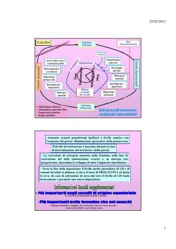 pollo004-fisiologia riproduttore femminile.pdf