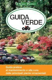 GUIDA VERDE copertina 08.indd, page 1 @ Preflight - Cifo spa