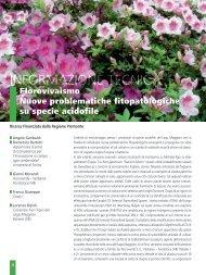 Florovivaismo: nuove problematiche fitopatologiche su specie ...