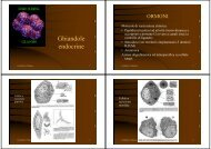 Ghiandole endocrine - SunHope