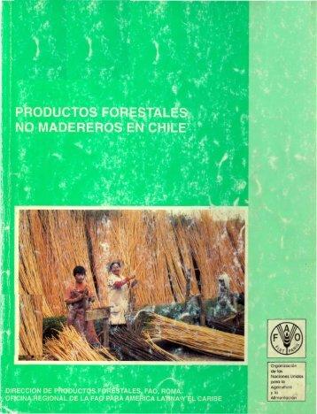 productos forestales no madereros en chile